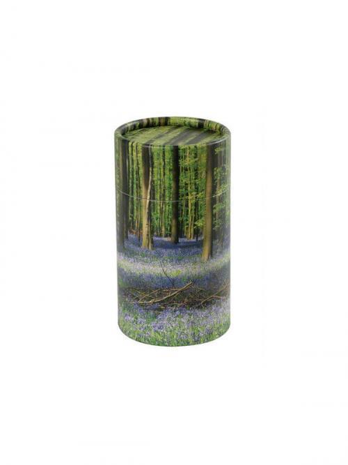 Strooikoker wilde hyacinth 1
